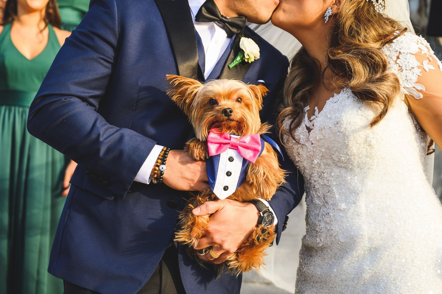 bride and groom's dog during the kiss outside church