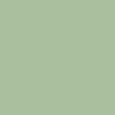 Light Mint Touch Album Colour Swatch