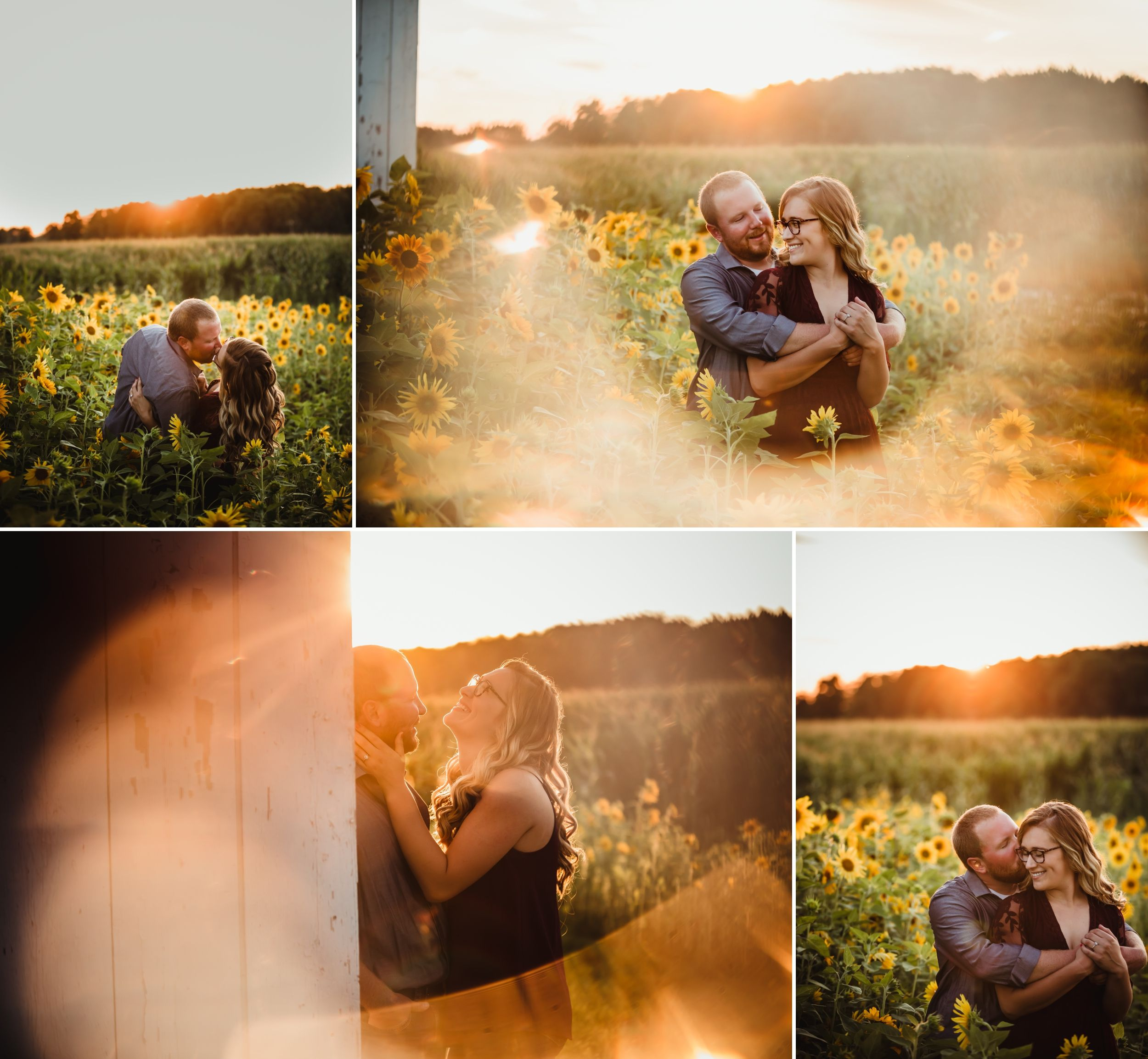Collage of a man and woman kissing, laughing, and embracing in a sunflower field at sunset.