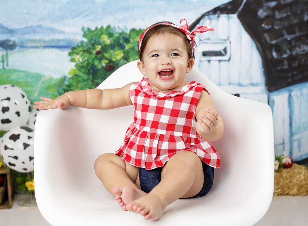 Cake Smash Session farm girl outfit in modern chair austin newborn photography