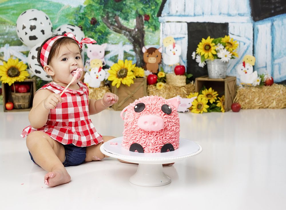Cake Smash Session farm girl outfit pink pig cake austin newborn photography