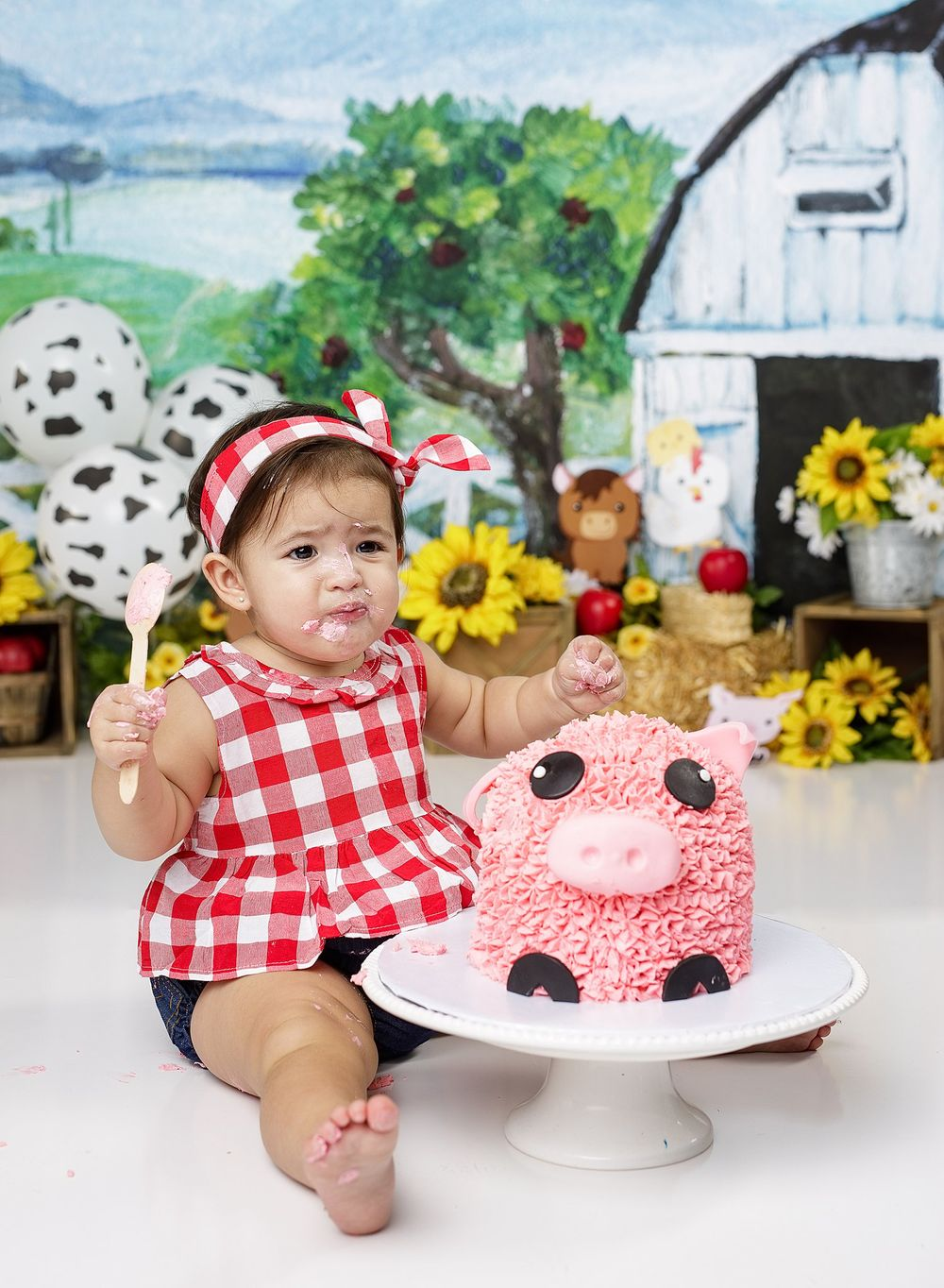 Cake Smash Session farm girl outfit austin newborn photography