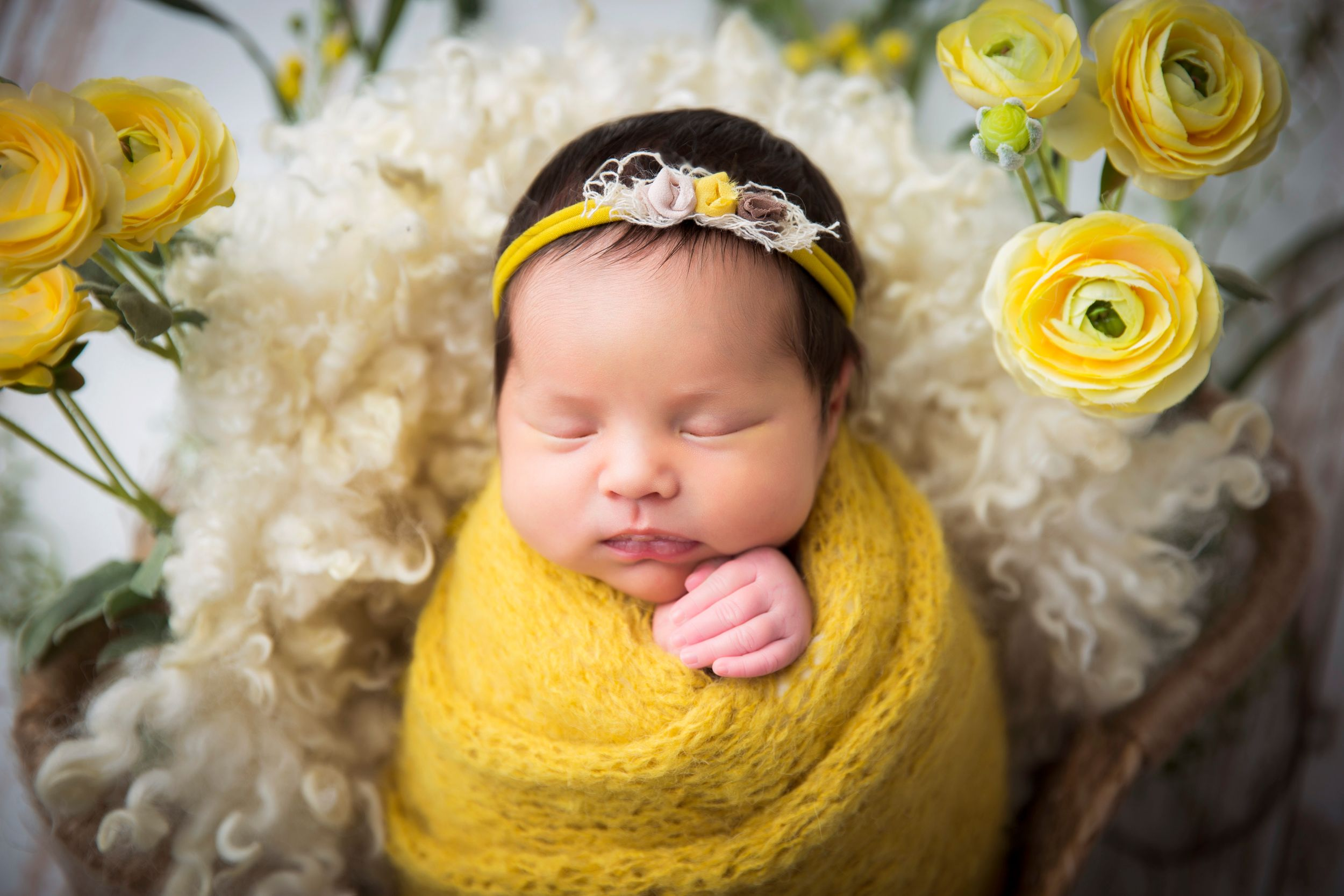 sugar land newborn photographer