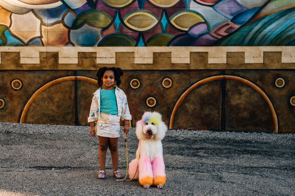 Colorful Poodle Dog Photography OTR Findlay Market Cincinnati Pet Photographer