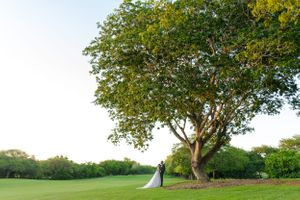 wedding tree - Nicolas Fanny - Mauritius Wedding Photographer - Destination Wedding