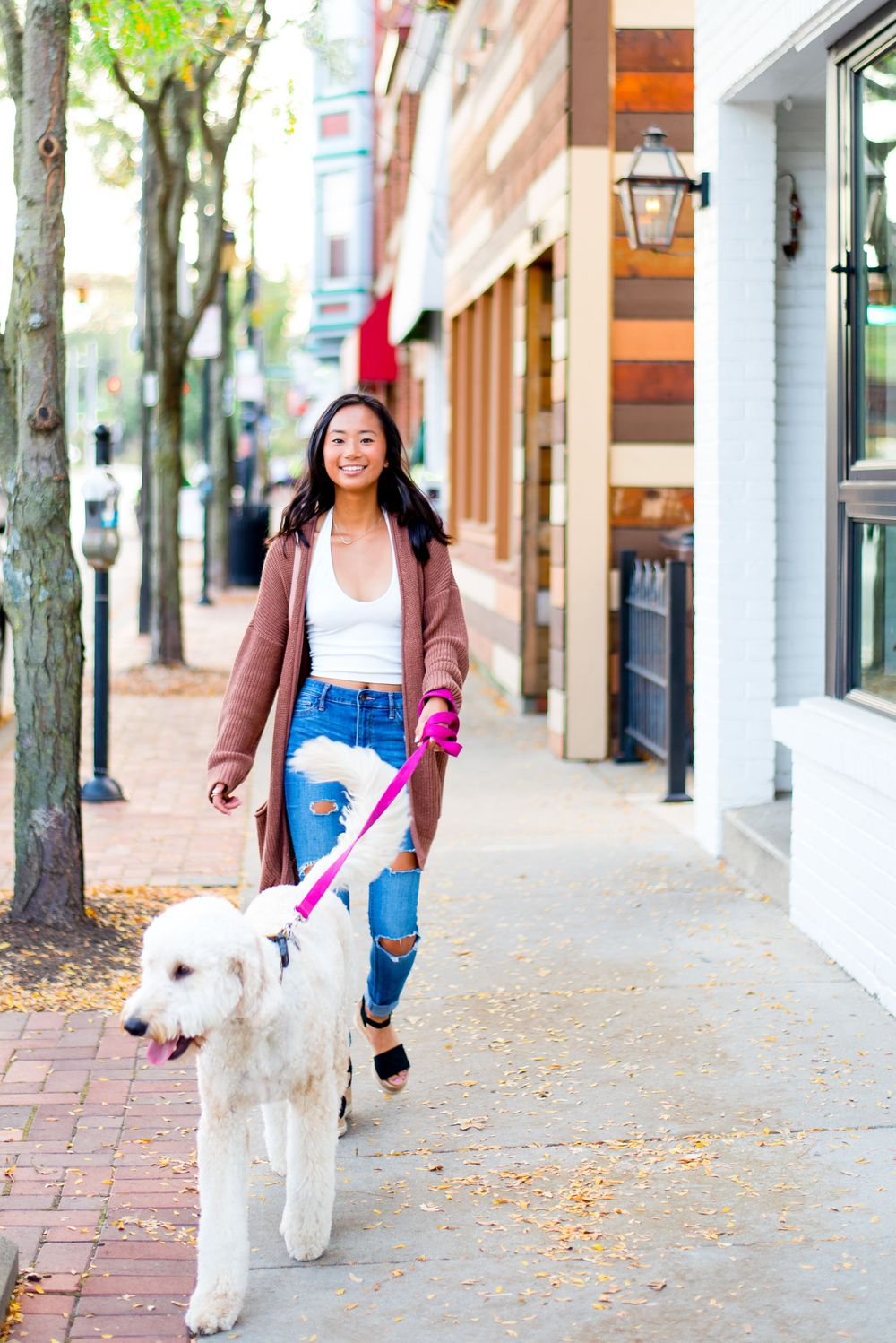 young girl in blue jeans and a brown cardigan walking her golden doodle on the streets of Chicago for her senior picture