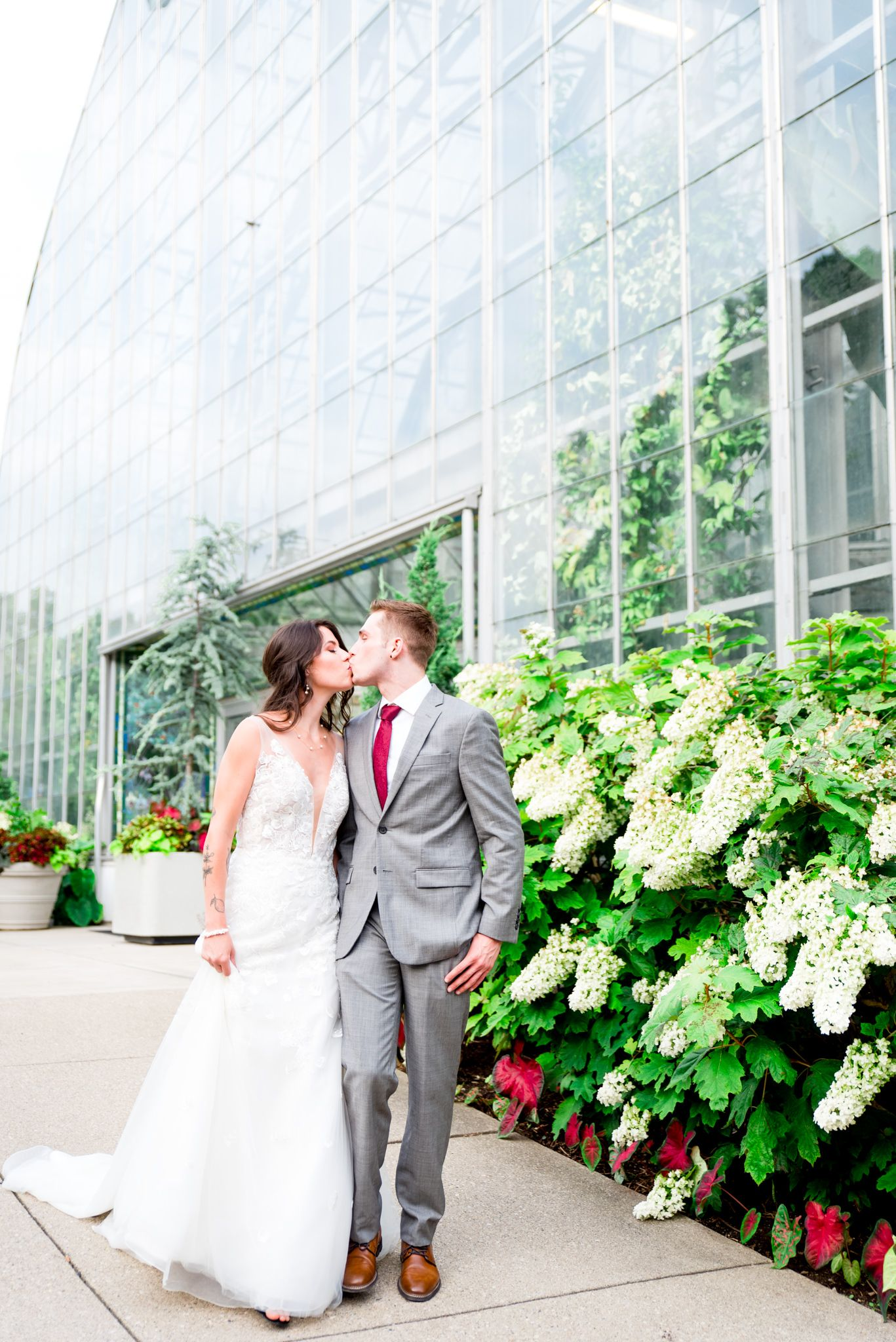 bride and groom in gray suit kiss and walk in front of Krohn Conservatory and white hydrangea bush