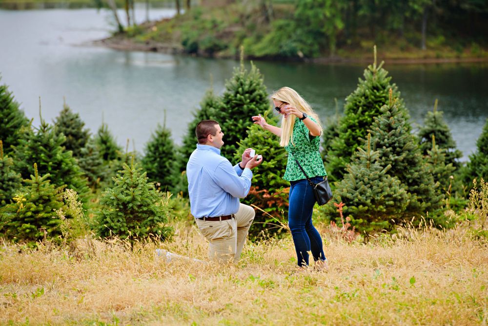 Proposal at Pine Tree Barn in Wooster Ohio