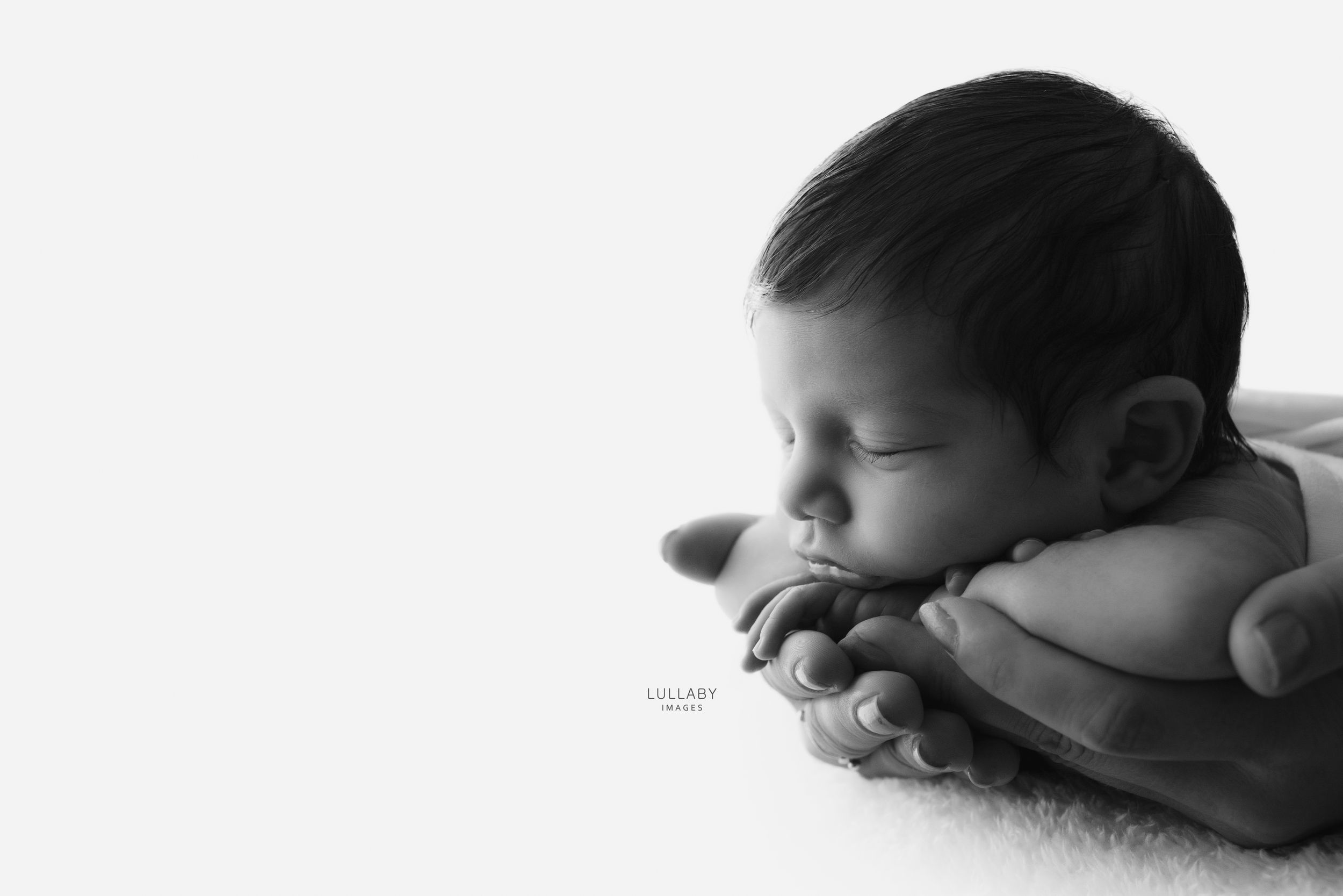 Lullaby Images newborn photographer In Your Arms