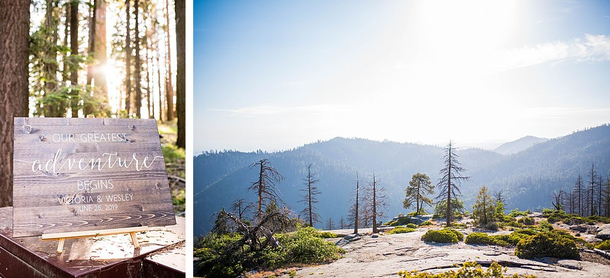 sequoia national beetle rock wedding adventure destination