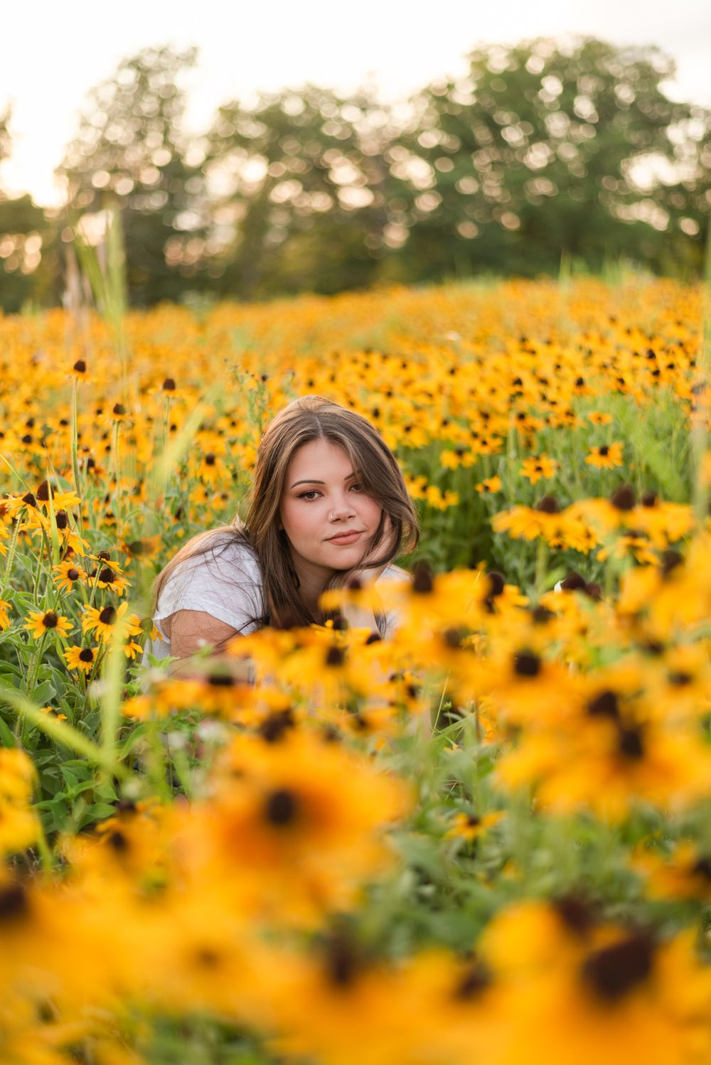 Girl sitting in sunflower patch in golden sunlight at Hartwood Acres in Pittsburgh Pennsylvania