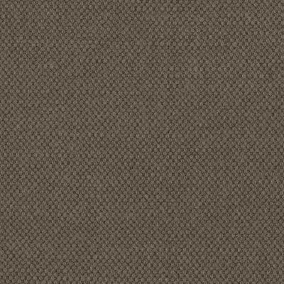 Light Moka Cotton Fabric Colour Swatch