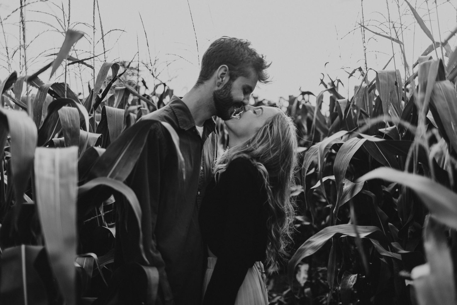 cornfields  engagement session in bath