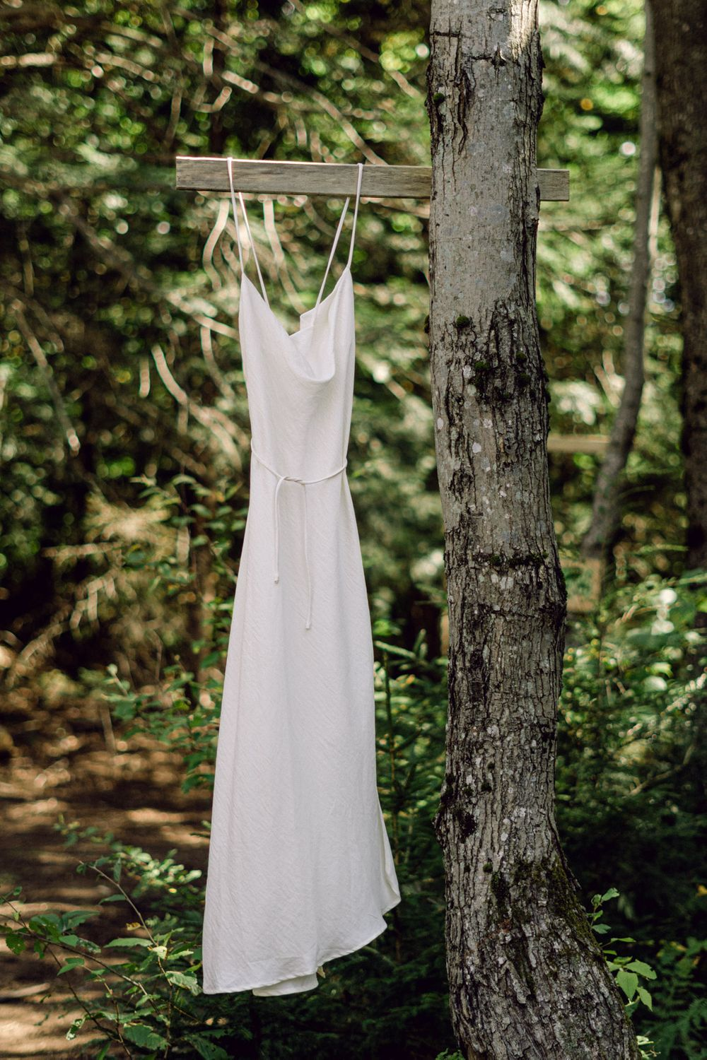 Wedding Dress Hanging in Forest