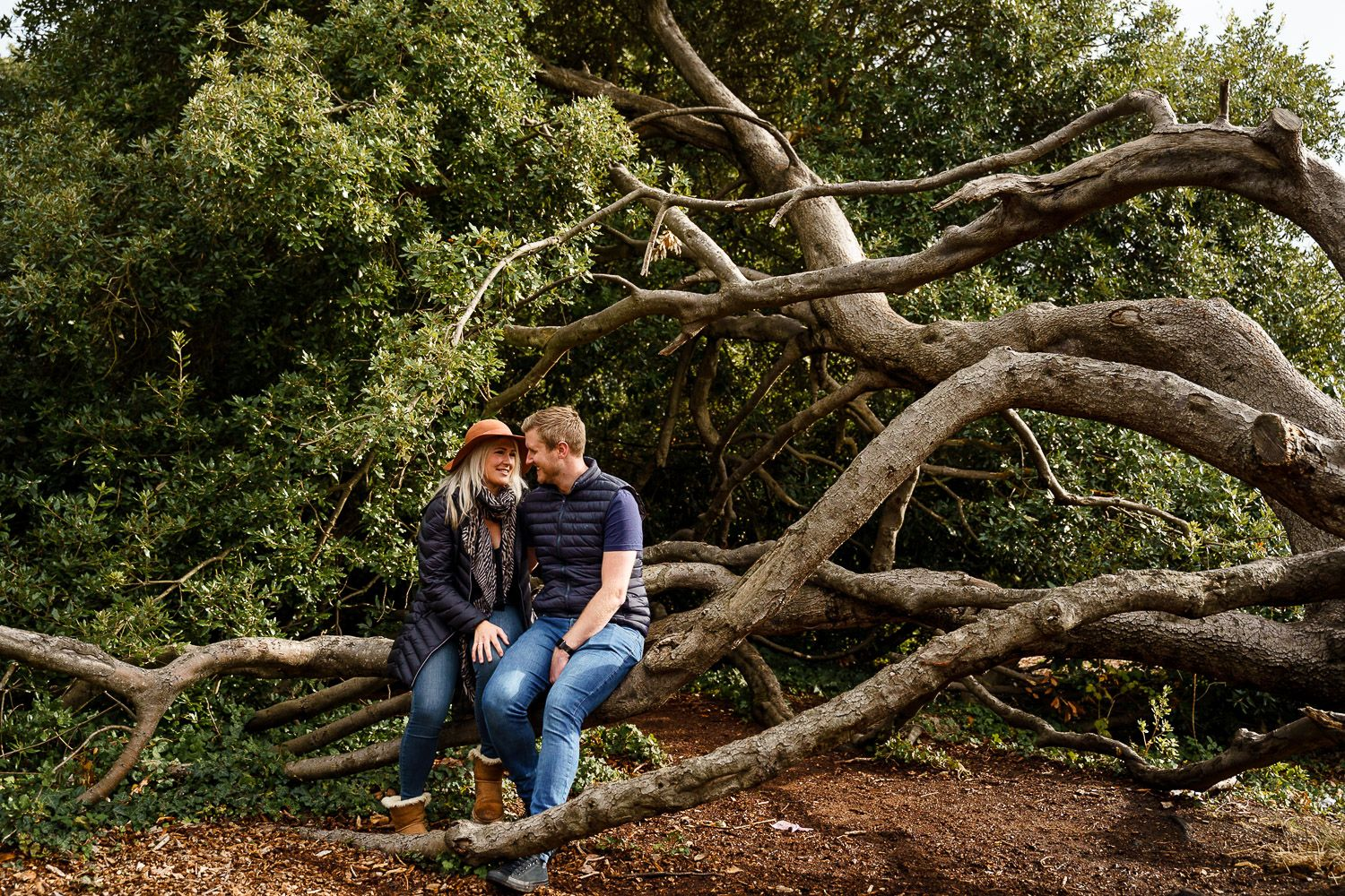 Romantic couple sit in the branches of a tree and cuddle. Katherine and her Camera engagement photoshoot.