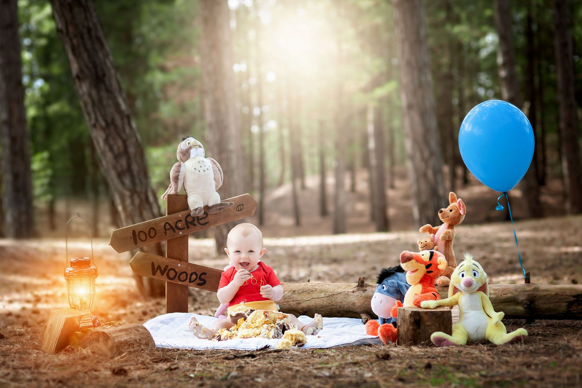 winnie the pooh cake smash in formby woods for 1st birthday