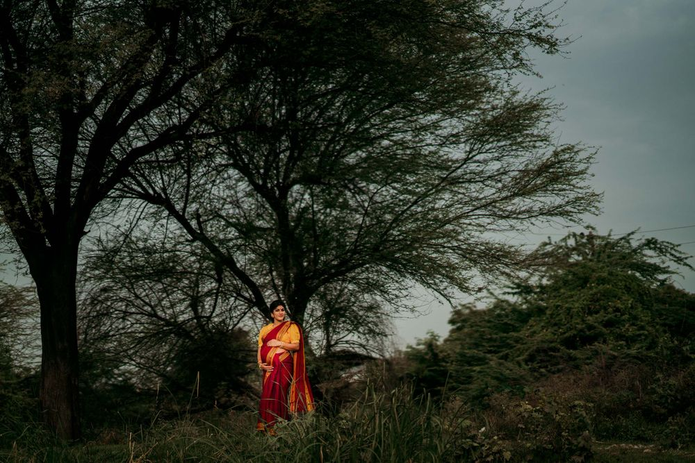 saree pregnancy photoshoot, Landscape picture of a pregnant woman in front of a huge tree