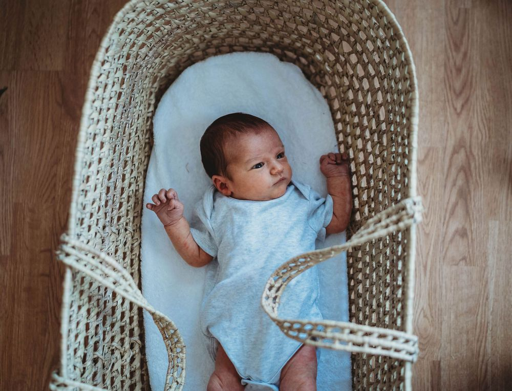 baby in the moses basket