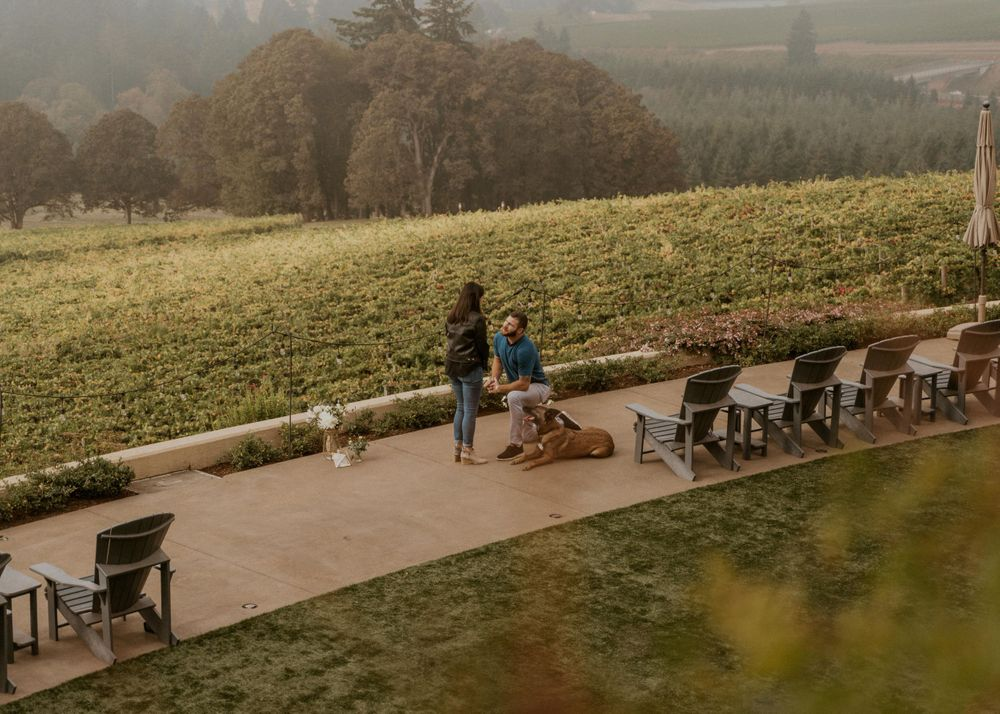 Proposal at Willamette Valley Vineyards