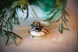detail wedding rings photographer luba wold taken at Spokane Beacon Hill