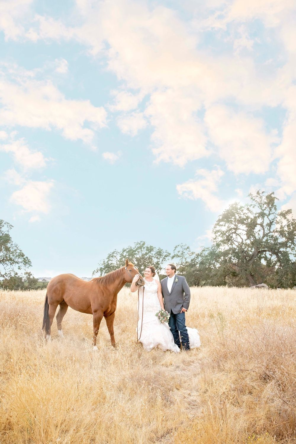 Bride and groom in a field with a horse