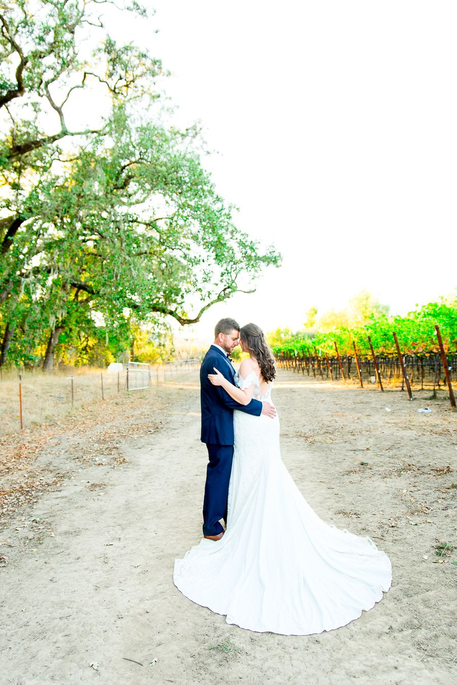 groom in navy suit and bride in dress with long train stand together in the vineyard at Pennyroyal Farm