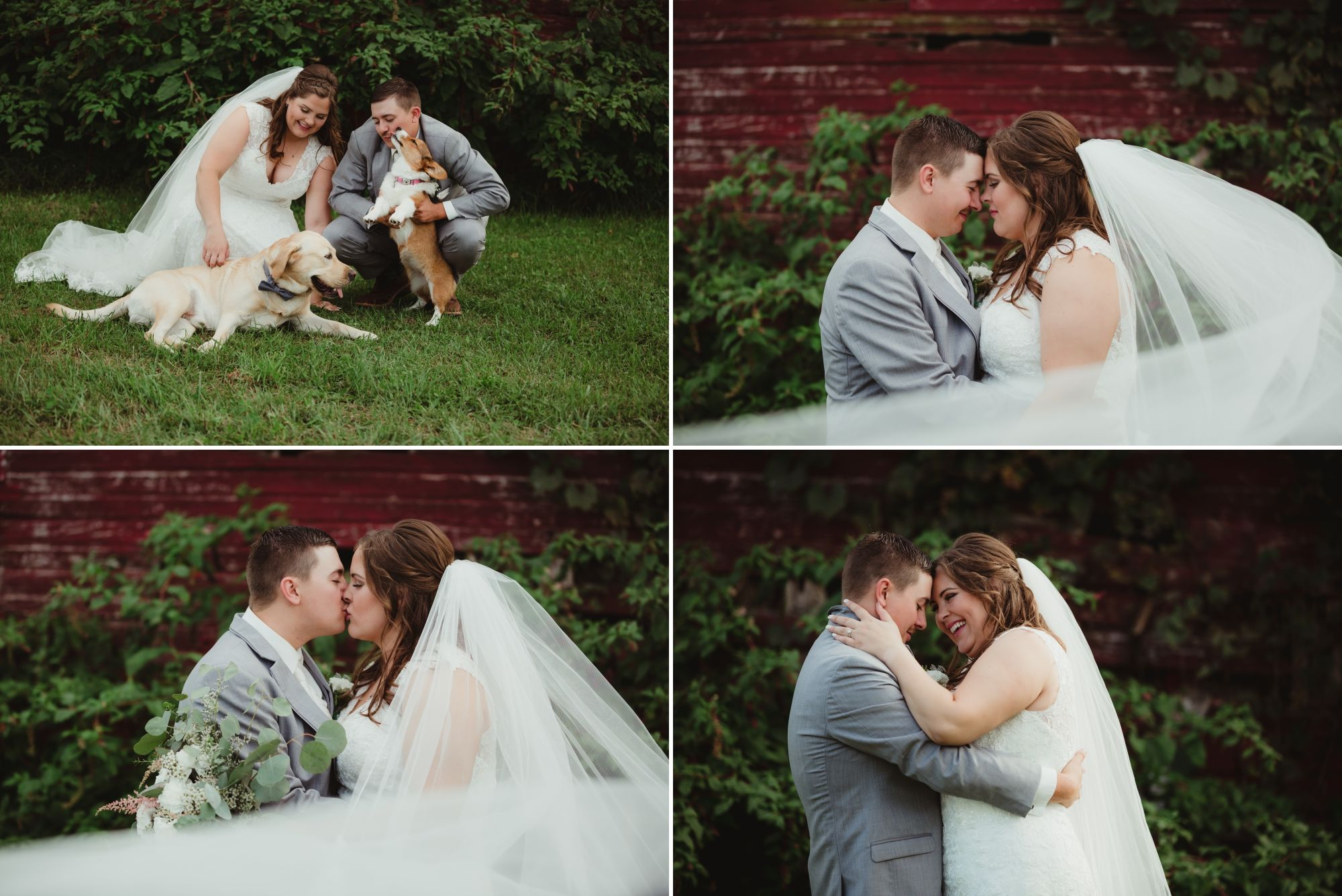 Collage of the bride and groom posing in front of the barn. Their dogs included in one.