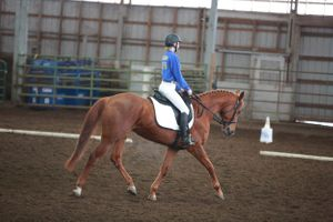 Ella Chedester and Rue riding Dressage at NW District OHSET meet at the Yamhill County Fairgrounds