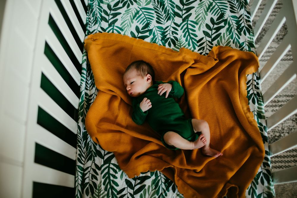 cade newborn session