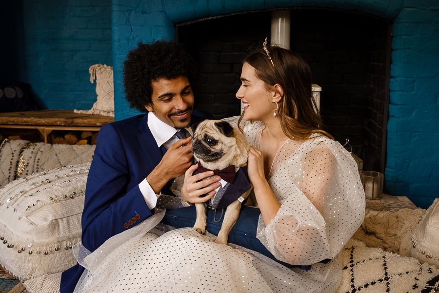A bride and groom with their pug in a suit - wedding photography for introverts