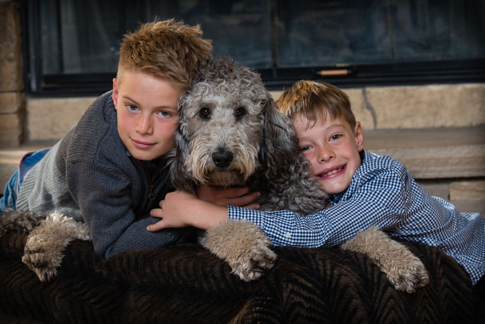 Two young brothers and their Labradoodle leaning and hugging on an ottoman